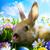 arte · páscoa · coelho · ovos · verde · grama - foto stock © konstanttin