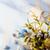 printemps · tête · espace · de · copie · fleur · rose - photo stock © konstanttin