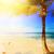 art caribbean tropical sea beach stock photo © konstanttin
