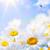 芸術 · フローラル · 春 · 夏 · イースター · 花 - ストックフォト © Konstanttin