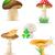set · icone · funghi · isolato · bianco · alimentare - foto d'archivio © konturvid