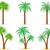 palmier · isolé · blanche · feuille · fond · beauté - photo stock © konturvid
