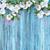 virágmintás · vízfesték · fehér · nyári · virágok · fából · készült · textúra - stock fotó © kostins