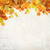 vector autumn leaves plaster wall background stock photo © kostins