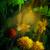 vízfesték · festmény · virágok · festék · virágmintás · digitális - stock fotó © kostins