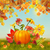 vector autumn thanksgiving card stock photo © kostins