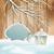 vector vintage christmas branch lantern background stock photo © kostins