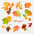 autumn leaf vector collection stock photo © kostins
