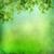 水彩画 · 緑の葉 · 手描き · フローラル · ツリー · デザイン - ストックフォト © kostins