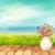 bahar · çiçekleri · sürahi · vektör · bahar · buket · seramik - stok fotoğraf © kostins