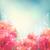 shining flowers roses peonies background stock photo © kostins