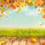 huş · ağacı · yaprak · sarı · turuncu · renkler · vektör - stok fotoğraf © kostins