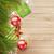 karácsonyfa · színes · golyók · fából · készült · illusztráció · fa - stock fotó © kostins