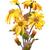 flowers watercolor illustration stock photo © kostins