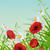 campo · vermelho · azul · borboleta · flor - foto stock © kostins