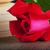 красную · розу · книга · любви · закрывается · красоту · зеленый - Сток-фото © koufax73