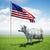 наличных · корова · Постоянный · зеленая · трава · области · американский · флаг - Сток-фото © kravcs