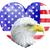 adelaar · vlag · gedetailleerd · illustratie · kaal · silhouet - stockfoto © krisdog