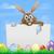 easter bunny and eggs sign stock photo © krisdog