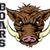 boars sports mascot stock photo © krisdog