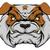 mean bulldog stock photo © krisdog