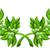 olive branch wreath stock photo © krisdog