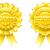 nyertes · babér · koszorú · csillagok · izolált · fehér - stock fotó © krisdog