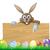 Easter · Bunny · ei · jacht · teken · cartoon · mand - stockfoto © krisdog