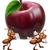 rode · appel · kern · cute · cartoon · vruchten · witte - stockfoto © krisdog