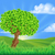 tree rolling hills landscape background stock photo © krisdog