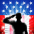 us flag military soldier saluting in silhouette stock photo © krisdog