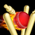 flaming cricket ball hitting wicket stumps stock photo © krisdog