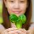 Woman and vegetable stock photo © kttpngart