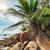 strand · stad · reizen · South · Africa · mooie · panoramisch - stockfoto © kubais