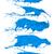 verf · splash · collectie · Blauw · geïsoleerd · witte - stockfoto © kubais