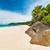 plaj · Seyşeller · ada · gökyüzü · su · manzara - stok fotoğraf © kubais