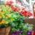jeune · femme · client · fleurs · magasin · Homme · ventes - photo stock © kurhan