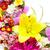 arte · belo · páscoa · flores · da · primavera · isolado · branco - foto stock © kurhan
