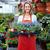 mulher · estufa · sementes · sorrindo · sorridente - foto stock © kurhan