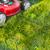 erva · daninha · verde · natureza · milagre · jardim · céu - foto stock © kurhan
