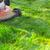 biały · trawy · czarny · narzędzie · rysunek - zdjęcia stock © kurhan