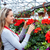 fiorista · lavoro · impianto · donna - foto d'archivio © kurhan