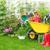 tuingereedschap · gras · vers · bloemen · planten - stockfoto © kurhan