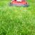 grama · vermelho · jardim · trabalhar - foto stock © kurhan