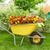 kerti · eszközök · virágok · locsolókanna · magok · föld · kert - stock fotó © kurhan