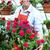человека · рабочих · питомник · люди, · работающие · садоводства · весны - Сток-фото © Kurhan