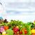 nutricionista · médico · hombre · hortalizas · de · trabajo · oficina - foto stock © kurhan