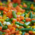 sárgarépa · zöldbab · egészség · zöld · ázsiai · életstílus - stock fotó © kurhan