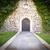 средневековых · парадная · дверь · стиль · дома · древесины - Сток-фото © kyolshin