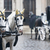 horses and carriage on stefansplatz in vienna stock photo © kyolshin